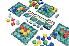 Reef, dans les pas d'Azul !