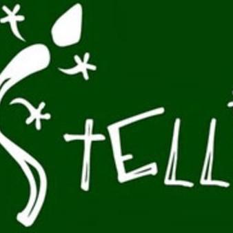 Stellio