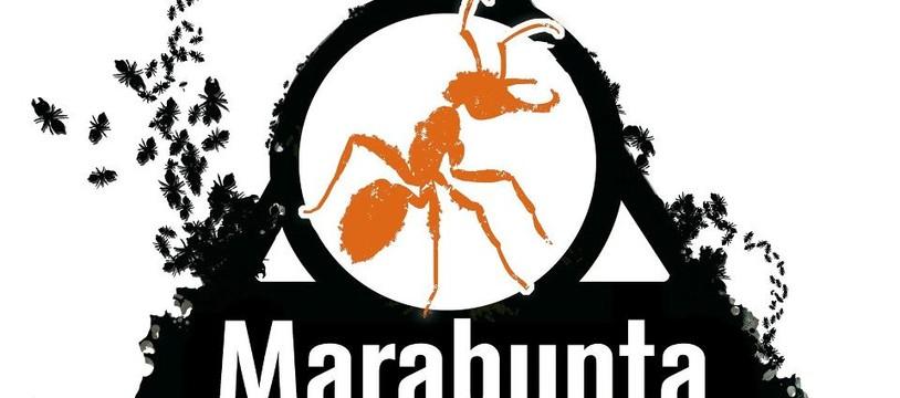 Marabunta, le planning 2013/2014