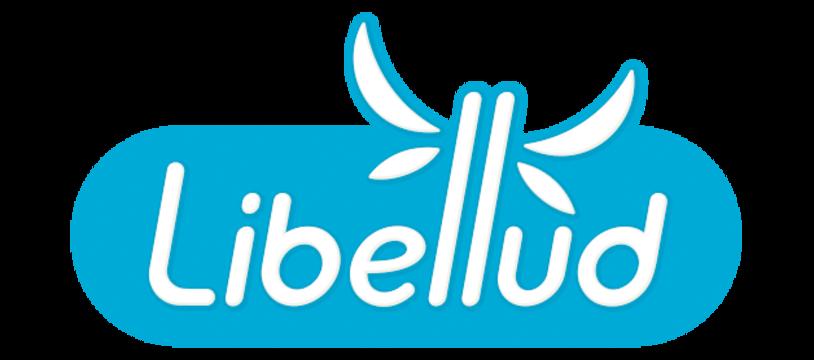 Le logo Libellud fait peau neuve !