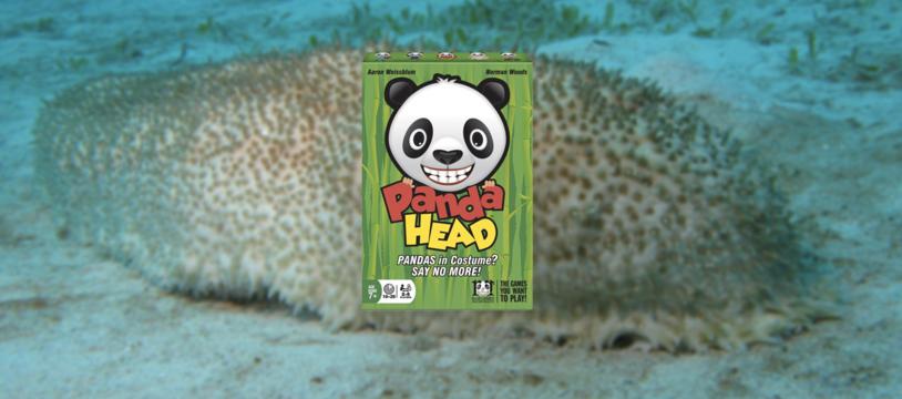 Panda Head, la chasse au petit concombre masqué et autres égarements