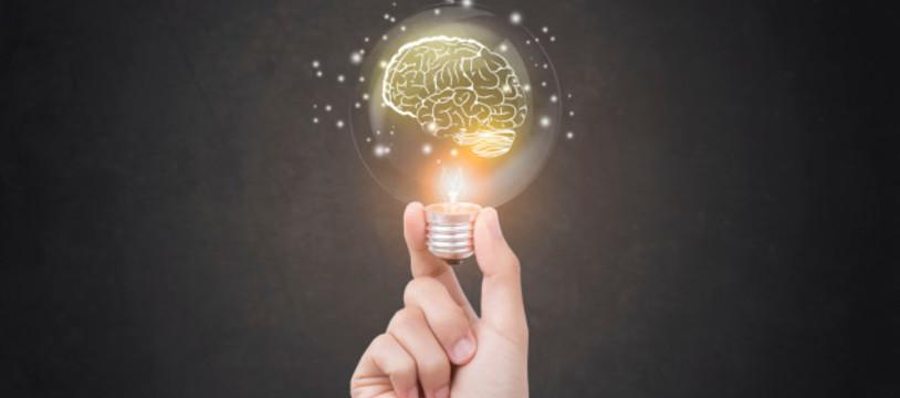 Asmodee Research : Les joueurs ont-ils un cerveau ?