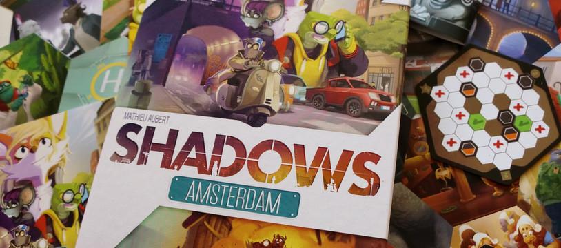 Critique deShadowsAmsterdam