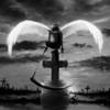 Li Angel