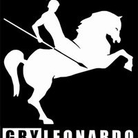 Gry Leonardo