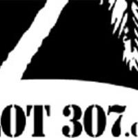 Îlot 307