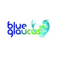 Blue Glaucus